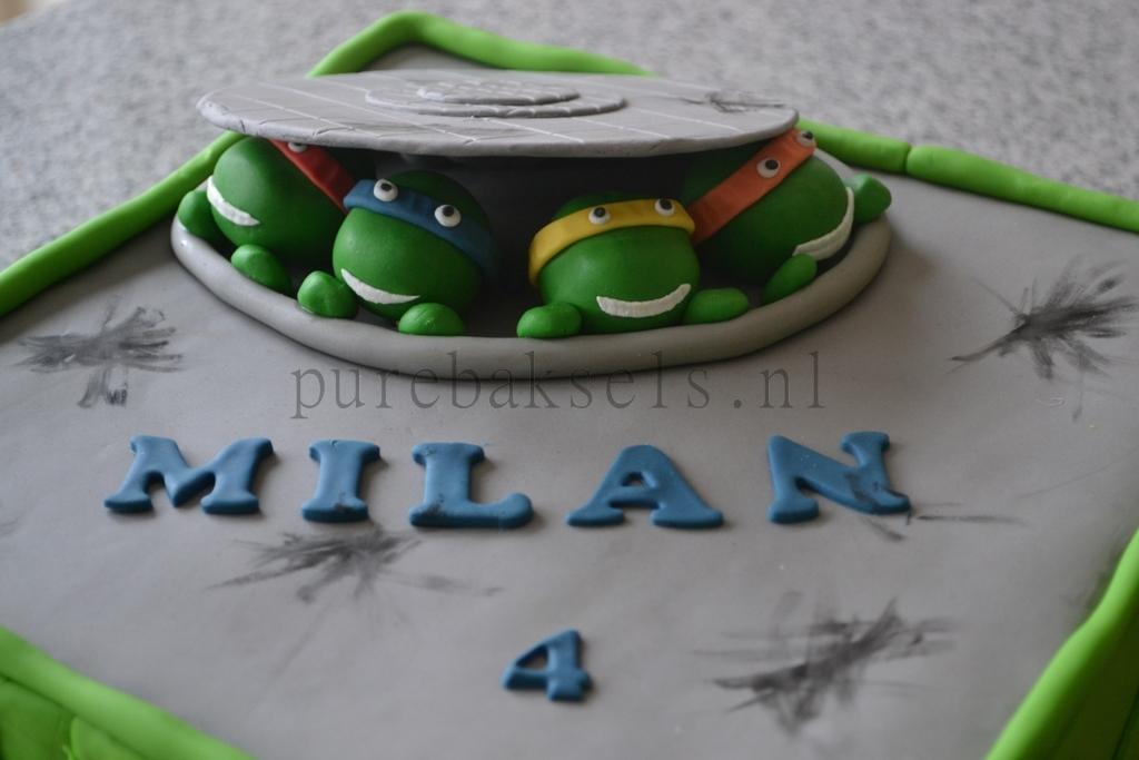 Ninja turtel taart (1)