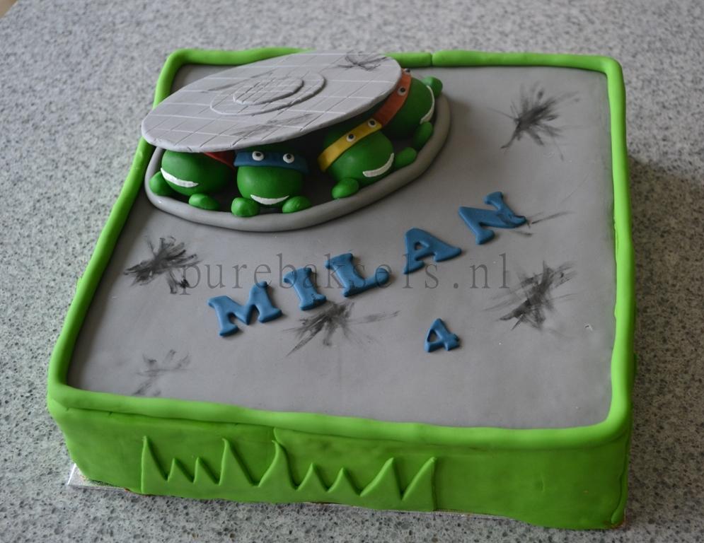 Ninja turtel taart (2)
