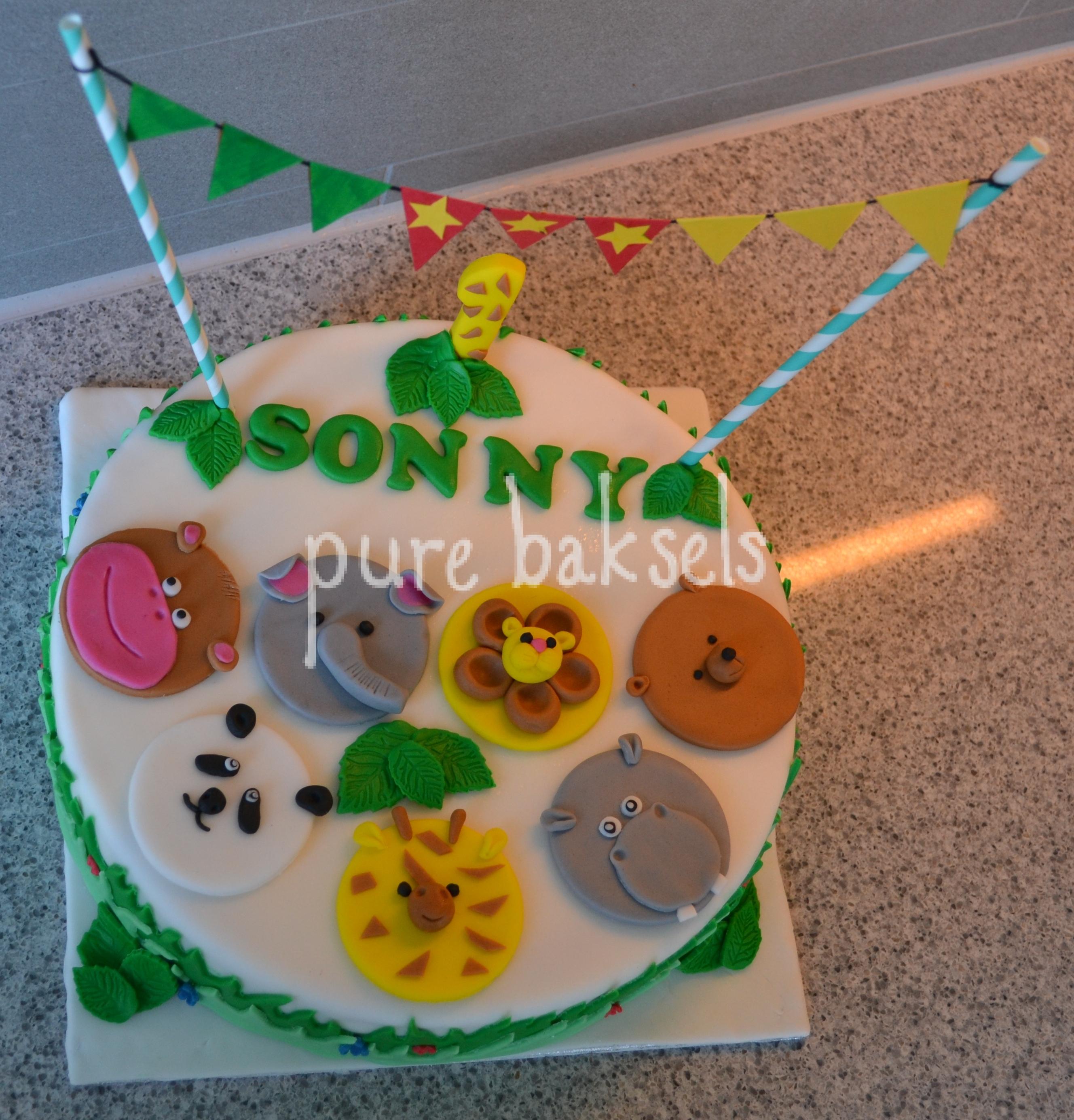 Jungle taart Sonny (2)